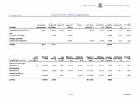 Muster-Finanzplanung Seite 2